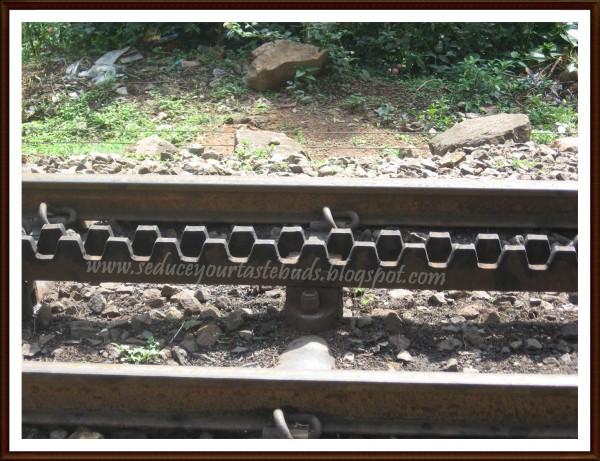 Ooty train track