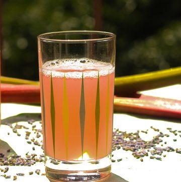 Rhubarb Lavender Iced Tea