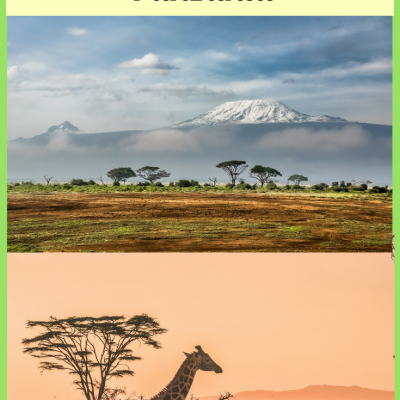 The Top 4 Things To Do in Tanzania