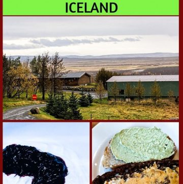 Viking Food Stories in Iceland at Farm Hotel Efstidalur II