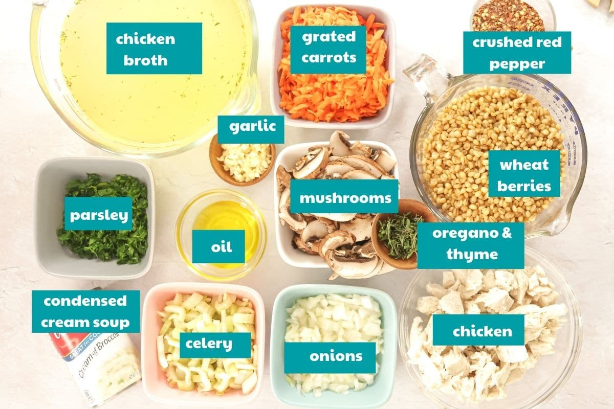Ingredients for chicken soup with labels
