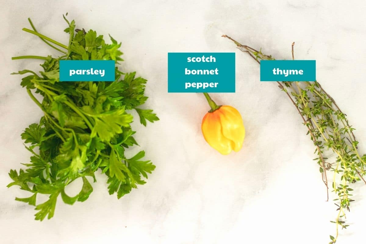 the spices for Caribbean pumpkin soup - photo includes parsley, thyme and Scotch Bonnet Pepper